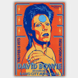 David Bowie (1973) - Concert Poster - 13 x 19 inches