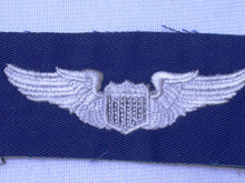Load image into Gallery viewer, Pilot Wing Insignia