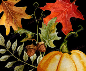 Fall Autumn Pumpkin Elements Clipart