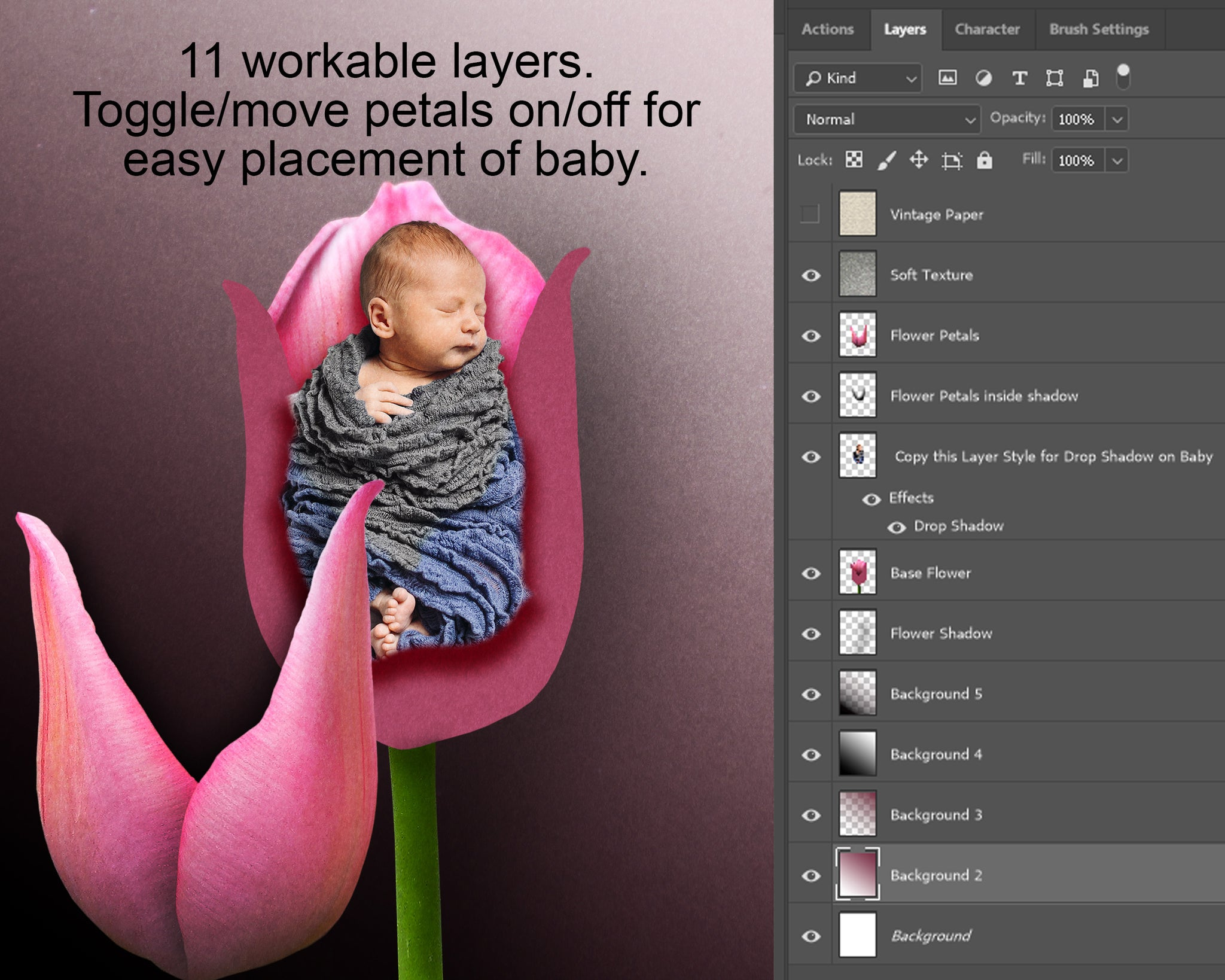Pink Tulip Flower Newborn Digital Backdrop