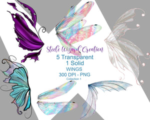 6 Fairy Wing PNG Transparent Overlays
