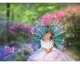 little girl with fairy wing