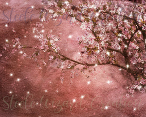 Sakura Cherry Blossom Background