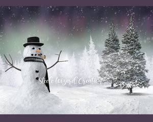 Northern Lights Snowman Backdrop