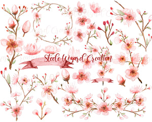 Watercolor Cherry Blossom Clipart Hand Painted