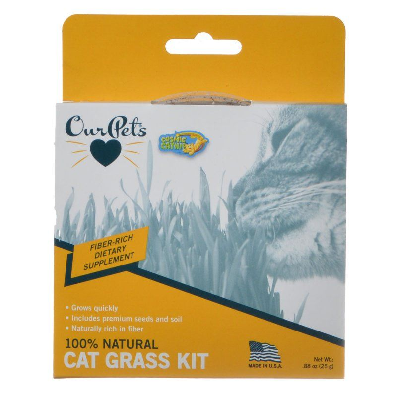 OurPets Cosmic Catnip Kitty Cat Grass