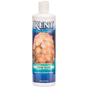 Kent Marine Coral Accel