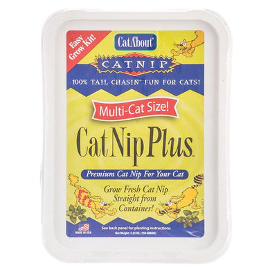CatA'bout CatNip Plus Easy Grow Kit
