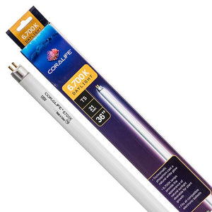 Coralife 6,700K Daylight T5 Fluorescent Lamp