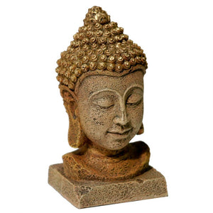 Blue Ribbon Exotic Environments Thai Buddha Head