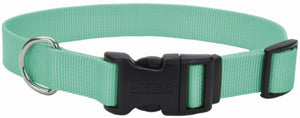 Coastal Pet Teal Nylon Tuff Dog Collar with Plastic Buckle