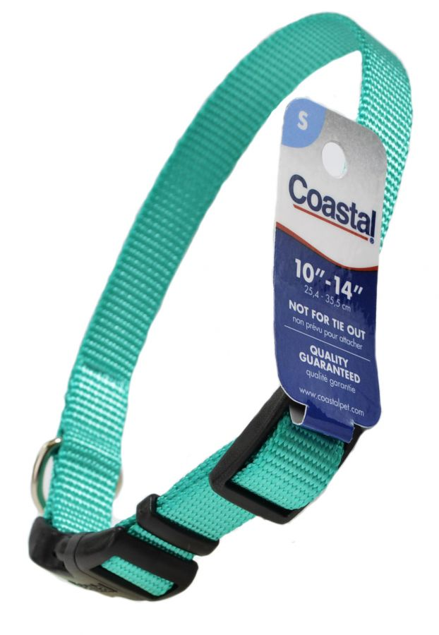 Coastal Pet Teal Nylon Tuff Dog Collar