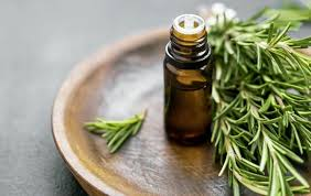 Essential oil - Rosemary - with a strong and crisp aroma