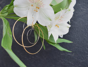 Two Tone Double Circle Hoops