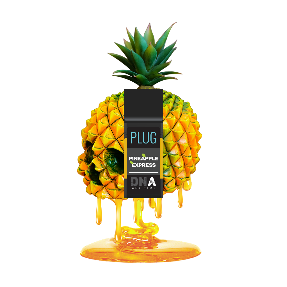 PlugPlay DNA - Pineapple Express 1000mg
