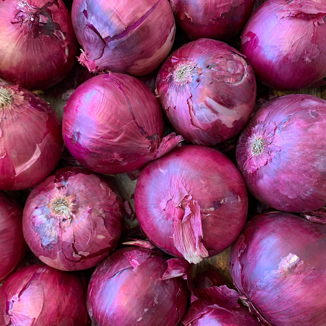 Red Onion (2lb)