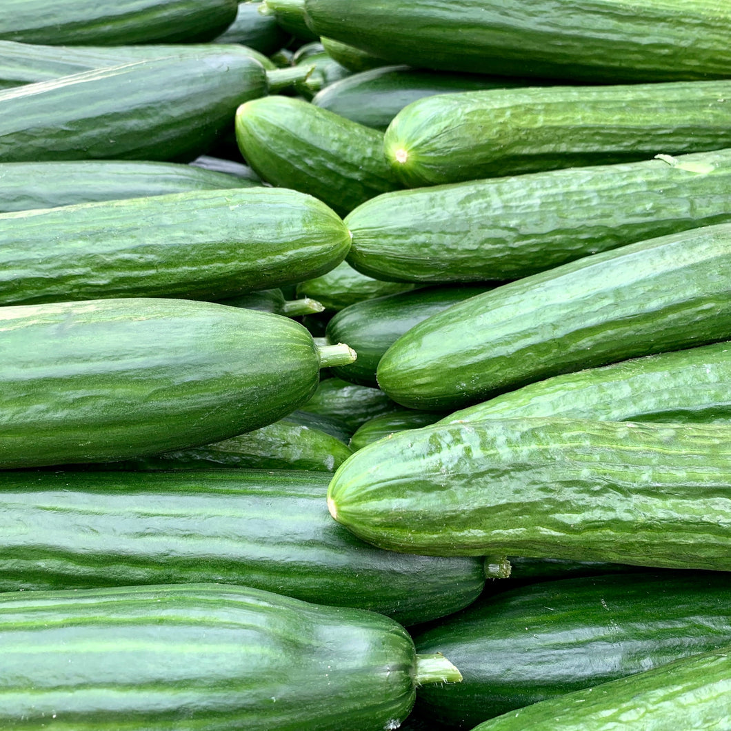 Cucumber (ea) LOCAL