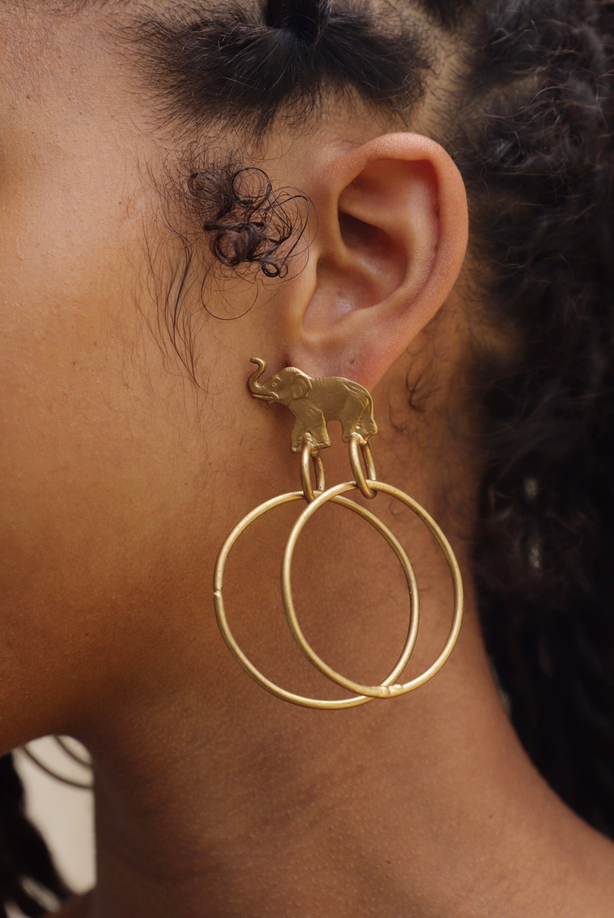 Trunk Double Hoops