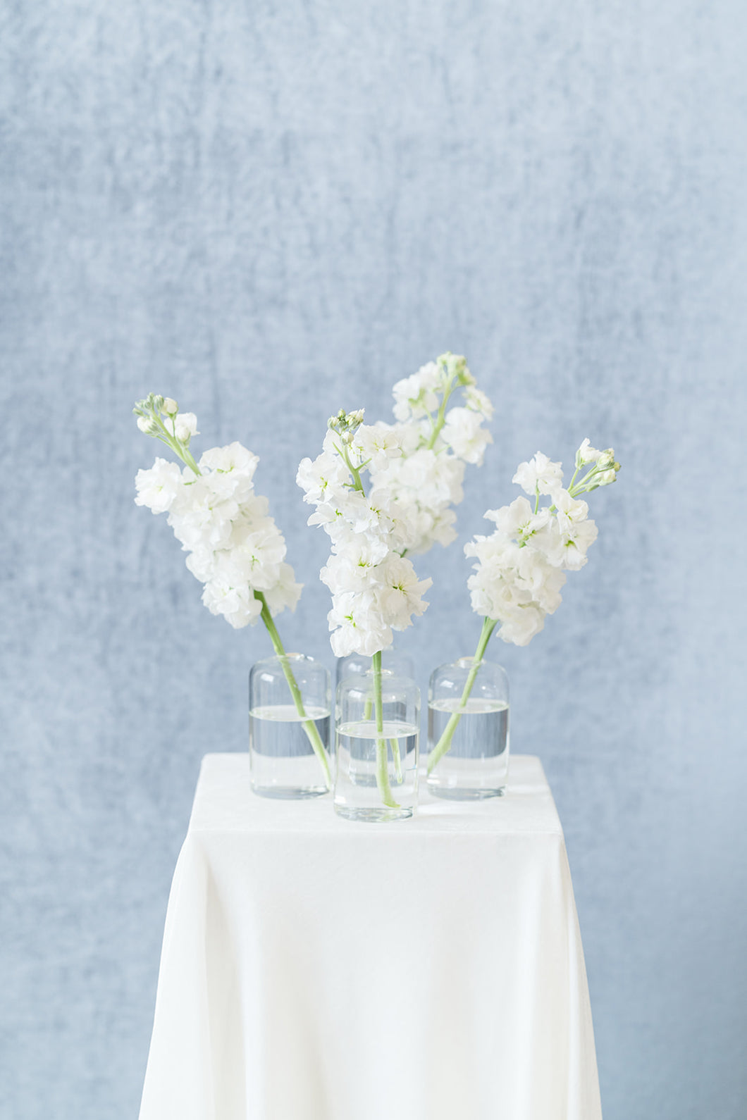 White Garden: Bud Vase Set