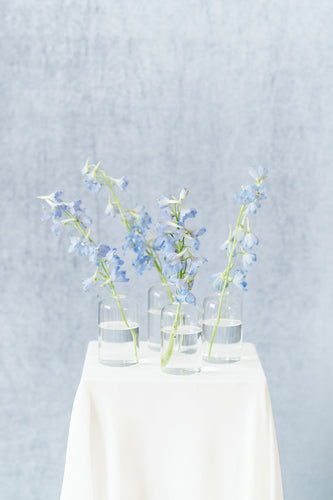 Something Blue: Bud Vase Set
