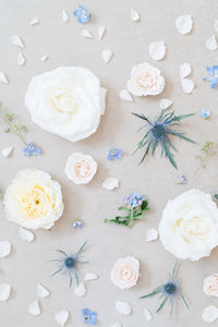 Something Blue: Styling Blooms / Cake Florals