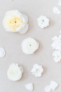 Classic White: Styling Blooms / Cake Florals