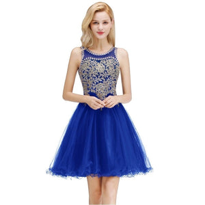 Luxury Beads Stones Lace Homecoming Dresses Sexy Open Back Lace Up Back Short Evening Prom Dresses