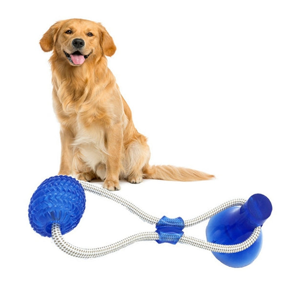 Suction Cup Pull Toy