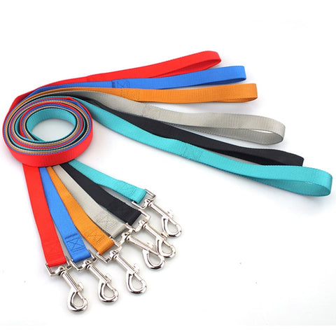 Classic Nylon Dog Leash