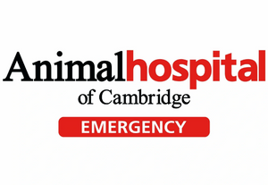 Animal Hospital of Cambridge Logo
