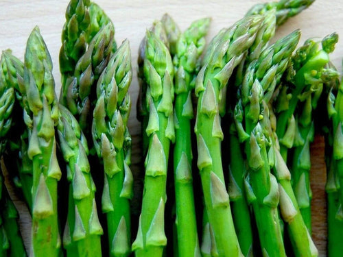 Asparagus Mary Washington - LifeForce Seeds