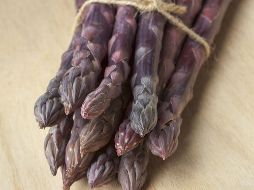 Asparagus Sweet Purple - LifeForce Seeds