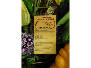 Artichoke, Green Globe -  Organic Heirloom vegetable seed Australia LifeForce Seeds
