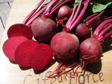 Load image into Gallery viewer, Beetroot Detroit Globe -  Organic Heirloom vegetable seed Australia LifeForce Seeds