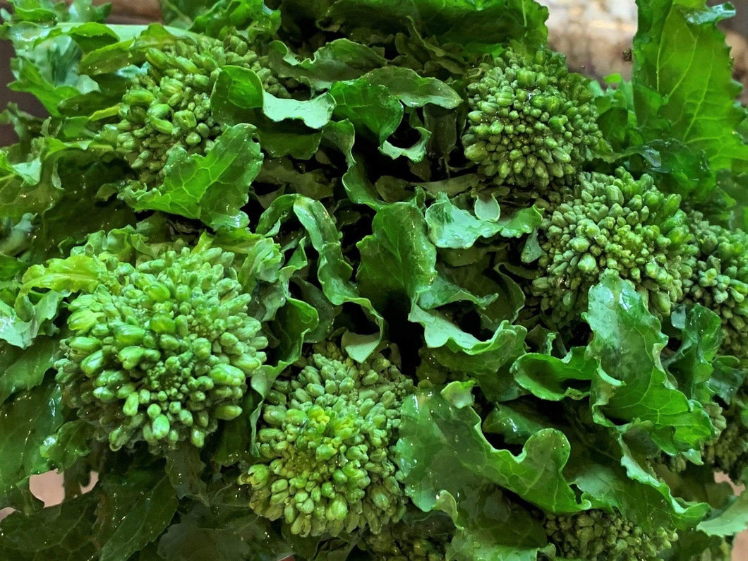 Broccoli Rabe Rapini -  Organic Heirloom vegetable seed Australia LifeForce Seeds