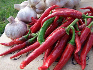 Chilli, Cayenne Long Thin -  Organic Heirloom vegetable seed Australia LifeForce Seeds
