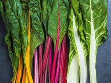 Load image into Gallery viewer, Silverbeet/ Swiss Chard Rainbow Colour -  Organic Heirloom vegetable seed Australia LifeForce Seeds