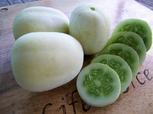 Load image into Gallery viewer, Cucumber, Heirloom Mix -  Organic Heirloom vegetable seed Australia LifeForce Seeds