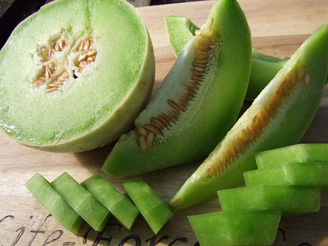 Melon, Honeydew Green -  Organic Heirloom vegetable seed Australia LifeForce Seeds
