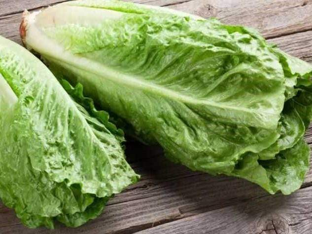 Lettuce Cos Parris Island -  Organic Heirloom vegetable seed Australia LifeForce Seeds
