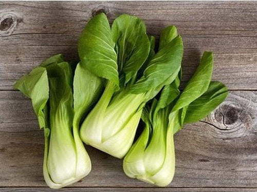 Pak Choi, Green stem F1 -  Organic Heirloom vegetable seed Australia LifeForce Seeds