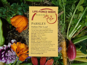 Parsley Italian Flat Leaf - LifeForce Seeds