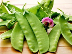 Snow Pea, Yukomo Giant -  Organic Heirloom vegetable seed Australia LifeForce Seeds