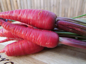 Carrot Purple Dragon -  Organic Heirloom vegetable seed Australia LifeForce Seeds