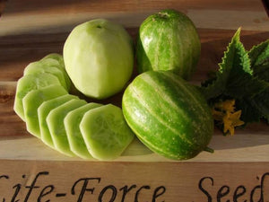 Cucumber, Heirloom Mix -  Organic Heirloom vegetable seed Australia LifeForce Seeds