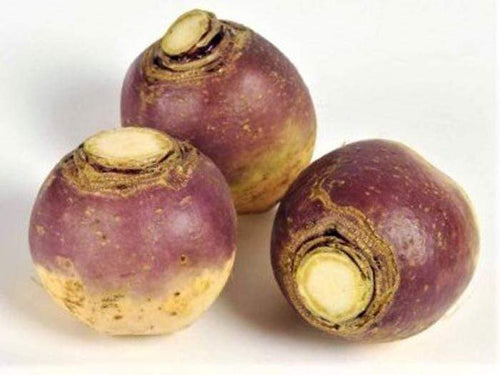 Swede American Purple Top -  Organic Heirloom vegetable seed Australia LifeForce Seeds