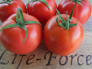 Tomato, Grosse Lisse -  Organic Heirloom vegetable seed Australia LifeForce Seeds