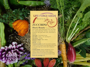 Zucchini, Black Beauty -  Organic Heirloom vegetable seed Australia LifeForce Seeds