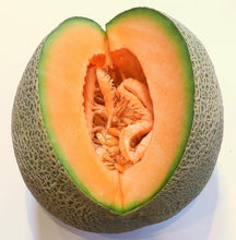 Load image into Gallery viewer, Rockmelon, Hearts of gold -  Organic Heirloom vegetable seed Australia LifeForce Seeds