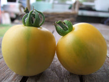 Load image into Gallery viewer, Tomato, Wapsipinicon Peach - LifeForce Seeds